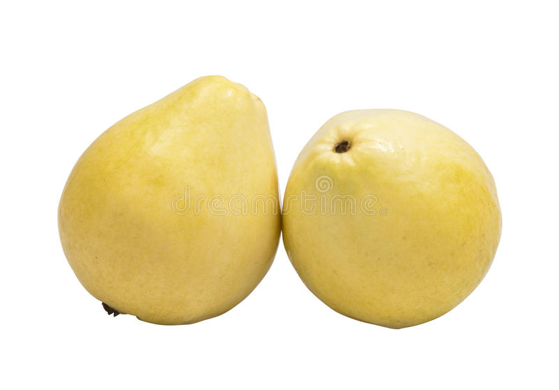 Zwei weiße Guaven lizenzfreie stockfotografie