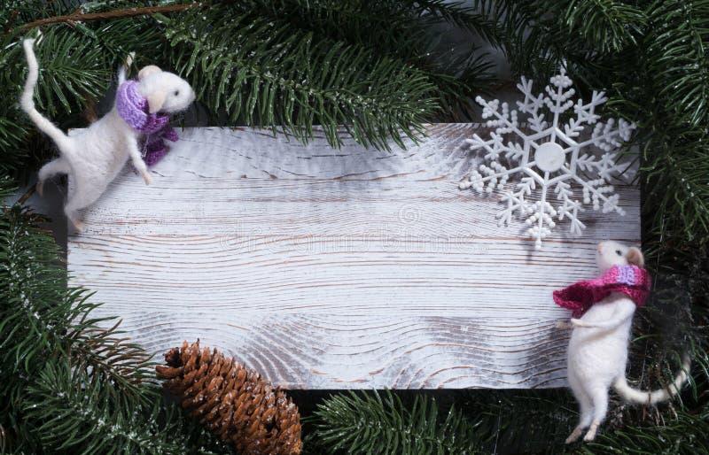 Zwei weiße Ratten auf einem Holzbrett Rund um den Fichtenzweig lizenzfreie stockfotos