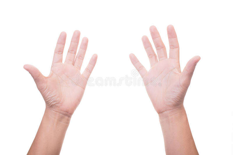 Zwei weibliche Hände lizenzfreie stockbilder
