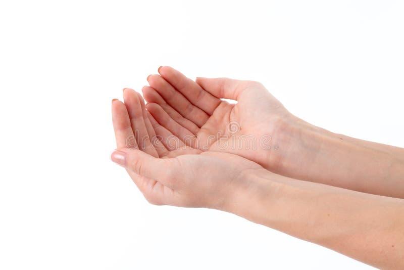 Zwei weibliche Hände mit erweitert herauf Palmen lizenzfreie stockbilder