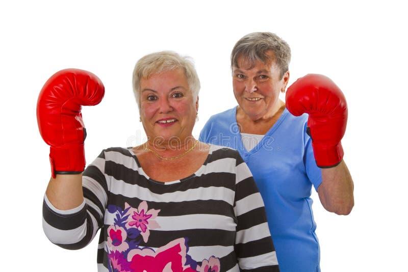 Zwei weibliche Senioren mit rotem Boxhandschuh stockbild