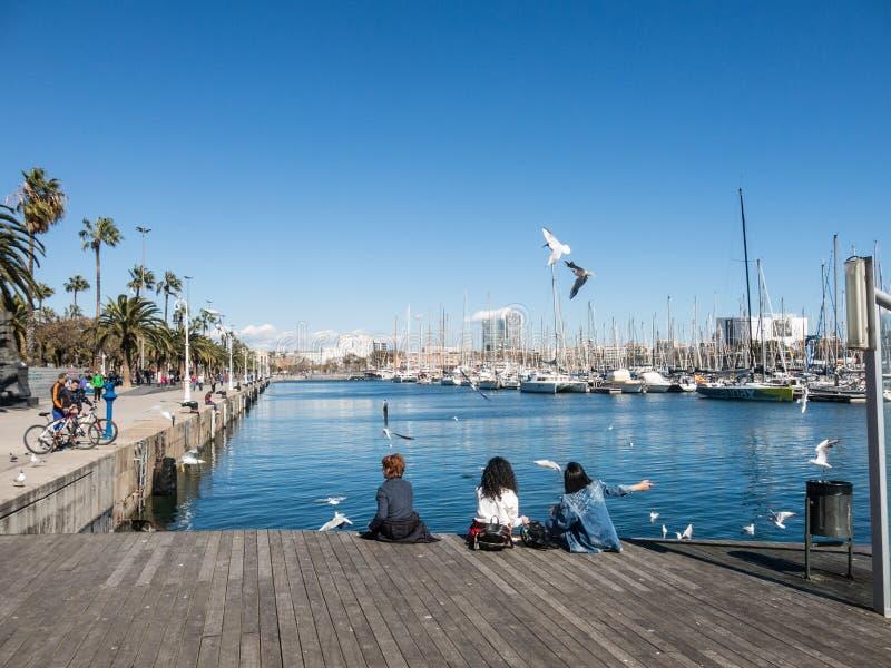 Zwei weibliche Touristen stehen umgeben durch Seemöwen im alten Hafen der Stadt von Barcelona still Katalonien, Spanien lizenzfreie stockbilder