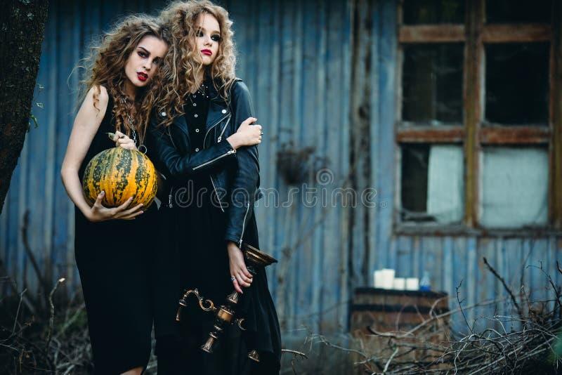 Zwei Weinlesefrauen als Hexen lizenzfreie stockbilder