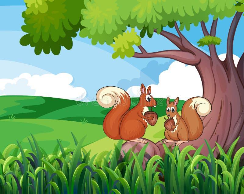 Zwei wilde Tiere unter dem Baum stock abbildung