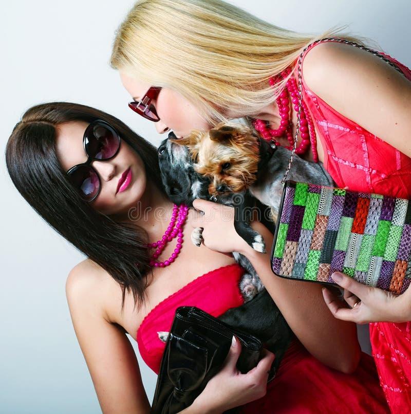 Zwei Zaubermädchen mit puppys stockfotos