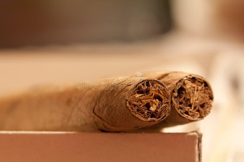 Zwei Zigarren stockfoto
