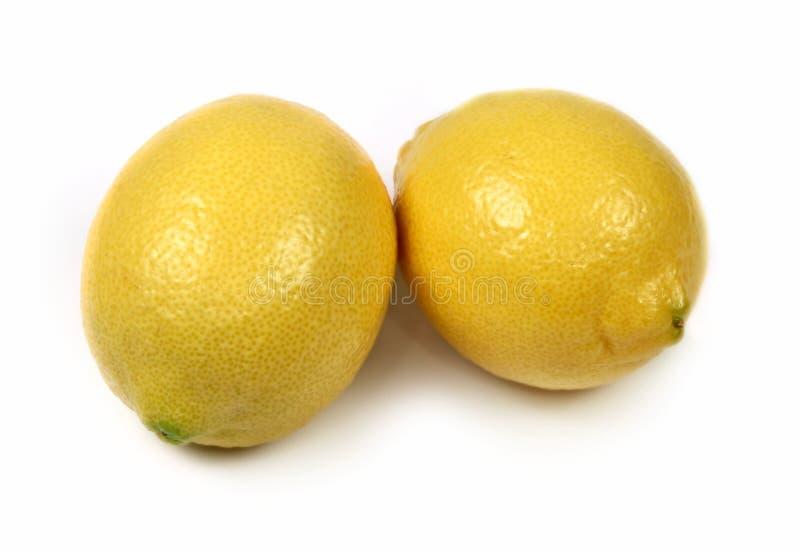 Zwei Zitronen getrennt stockfotografie