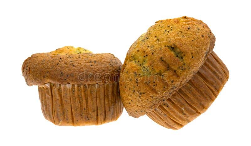 Zwei Zitronenpfeffer-Frühstücksmuffins auf einem weißen Hintergrund lizenzfreie stockfotos
