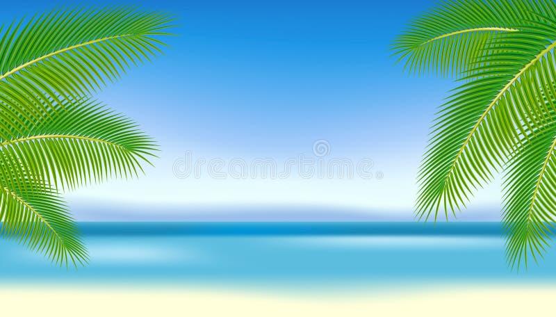 Zweige der Palmen gegen das blaue Meer. lizenzfreie abbildung
