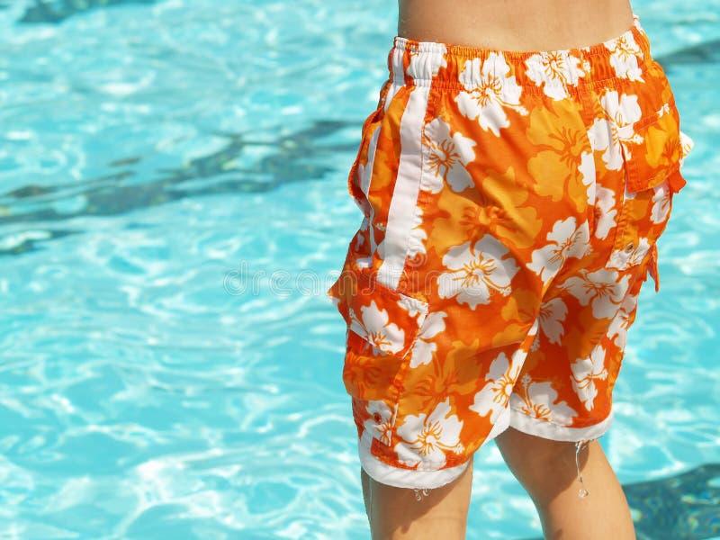 Zwem boomstammen stock foto