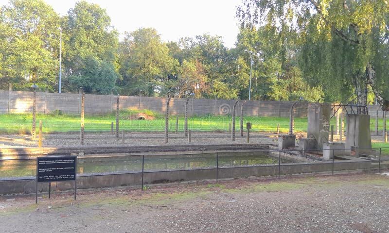 Zwembad in Aushwitz stock afbeelding