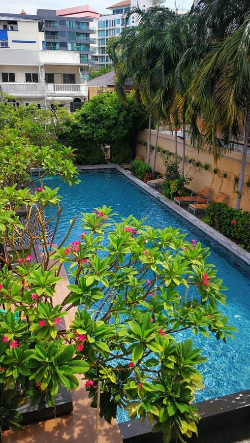 Zwembad bij een Hotel in Thailand stock afbeeldingen