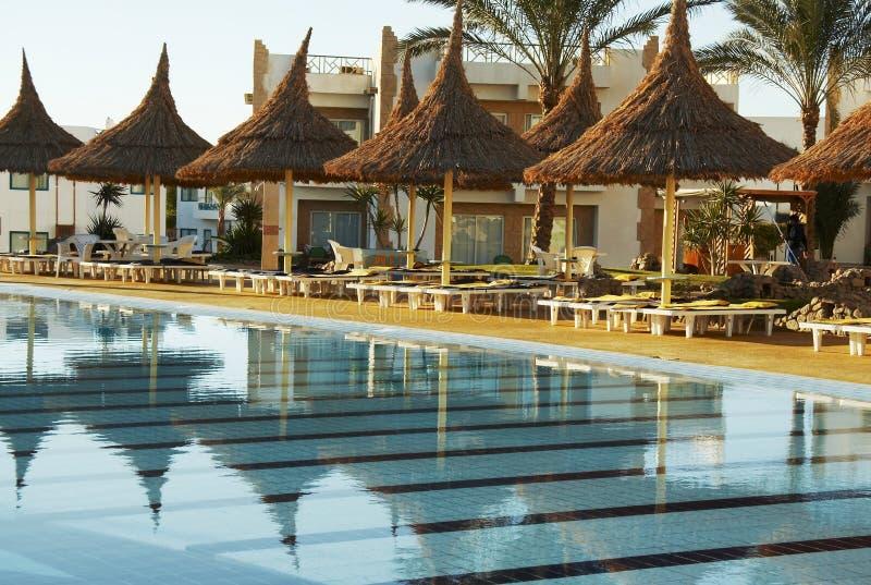 Zwembad en parasols royalty-vrije stock afbeelding