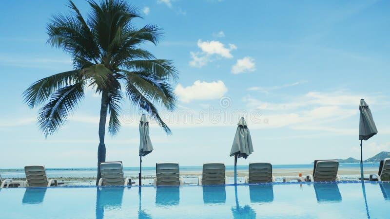 Zwembad met palm dichtbij het overzees op Koh Samui royalty-vrije stock afbeelding