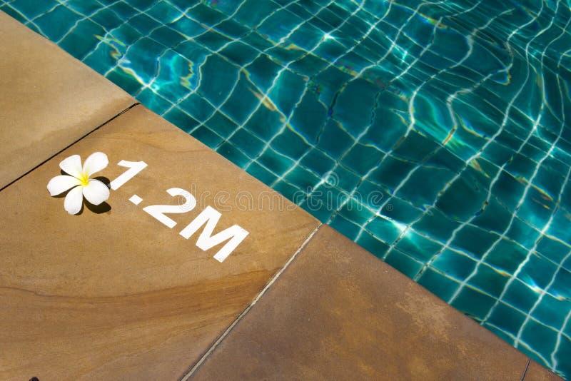 Zwembad met zonnige bezinningen royalty-vrije stock foto