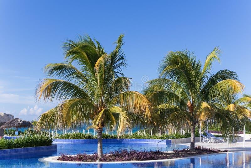 Zwembadmening met mening van Caraïbische oceanr in Cuba royalty-vrije stock afbeeldingen
