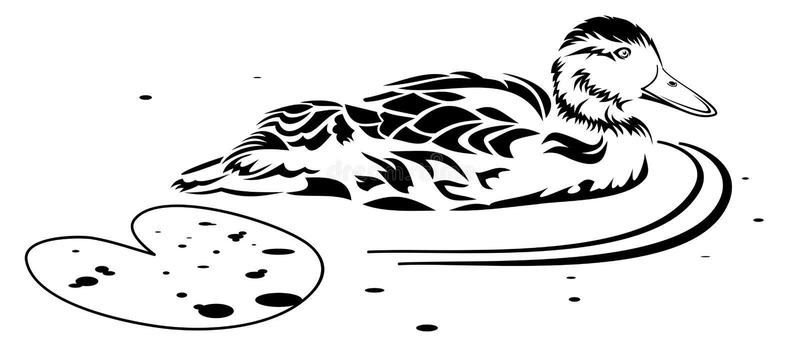 Zwemmende Eend vector illustratie