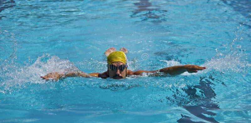 Jonge Jongenszwemmer In Pool, Vlinderslag Royalty-vrije Stock Foto's