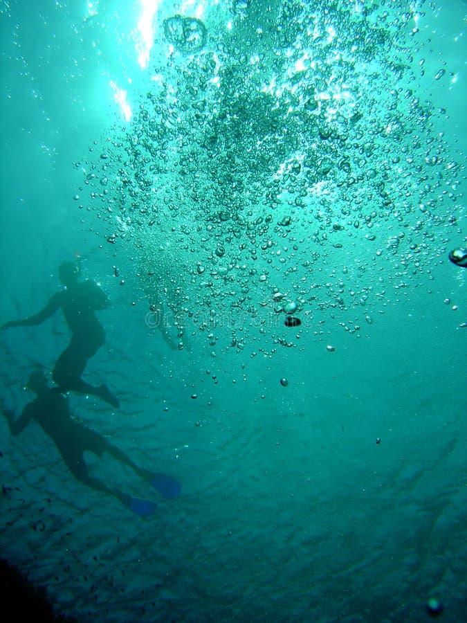 Zwemmers en snorkellers royalty-vrije stock afbeeldingen