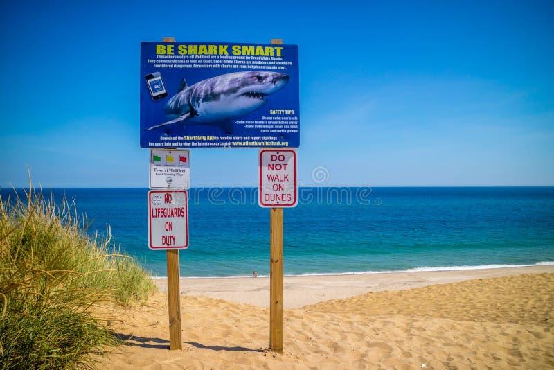 Zwemmers en Waadvogelsveiligheidsrichtlijnen in de Nationale Kust van Cape Cod royalty-vrije stock afbeelding