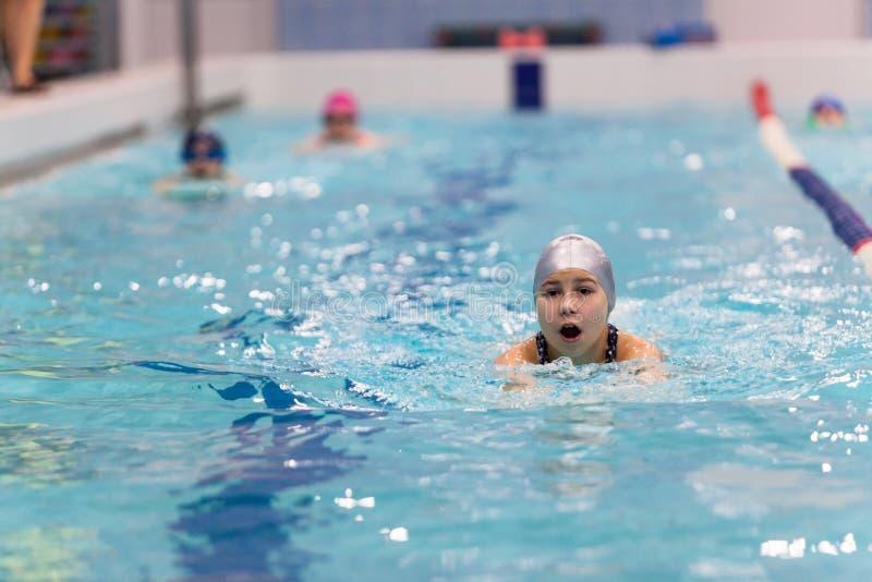 Zwemmers jong meisje die uitvoerend de vlinderslag in zwembad, exemplaarruimte ademen royalty-vrije stock foto