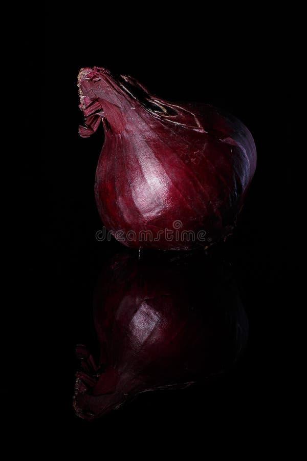 Zwiebel auf einem schwarzen Hintergrund lizenzfreie stockfotografie