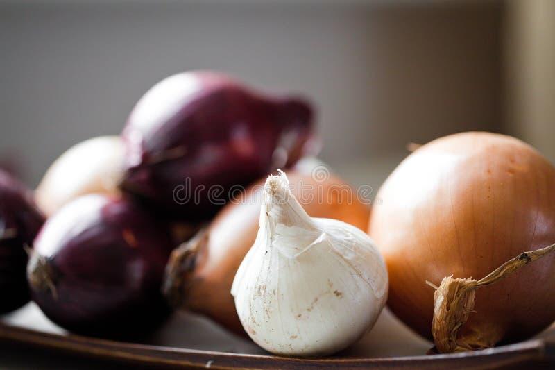 Zwiebel auf hölzernem Vorstand stockfoto