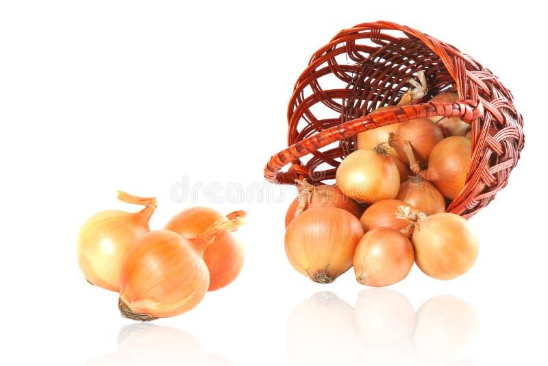 Zwiebel und Weidenkorb stockfotos