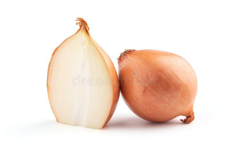 Zwiebelbirne lokalisiert Zwiebelscheibe auf weißem Hintergrund stockfoto