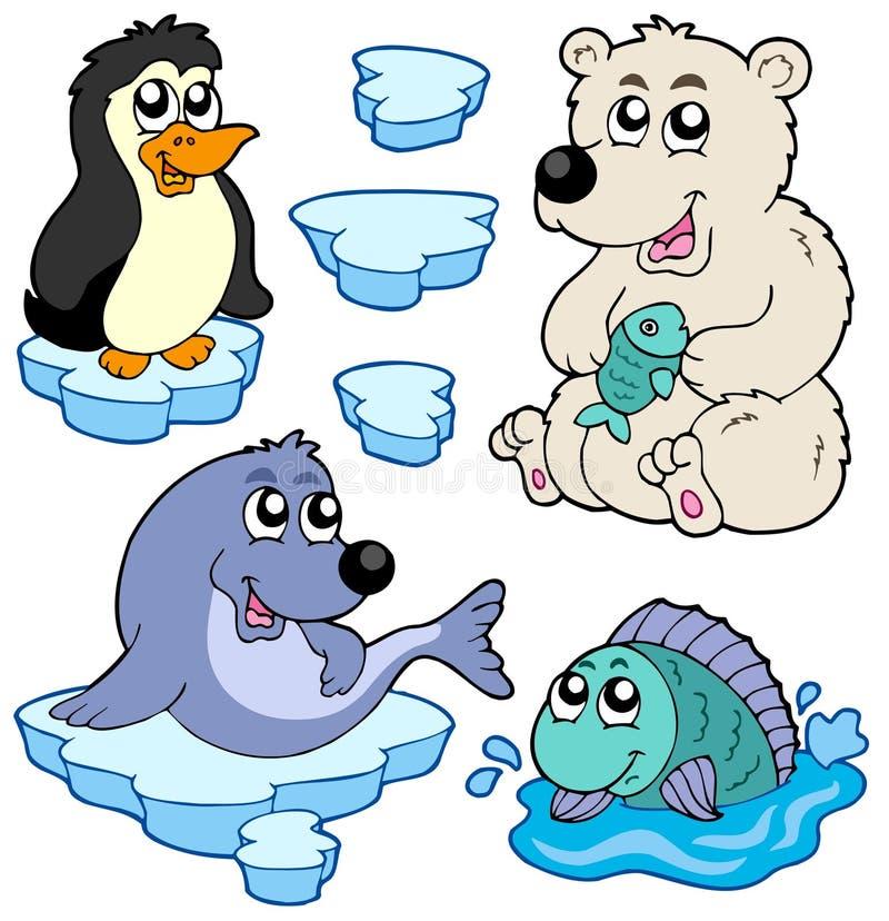 zwierząt arctic kolekcja royalty ilustracja