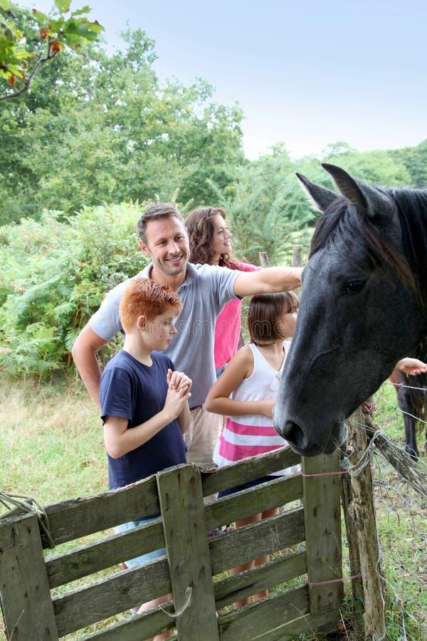 zwierząt dzieci gospodarstwo rolne zdjęcia stock