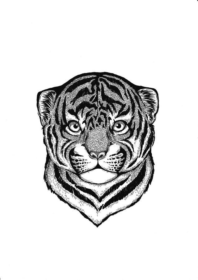 zwierzę afrykańskiej wilder tygrys Mały zwierzę Śliczny druk dla dzieci odziewa royalty ilustracja