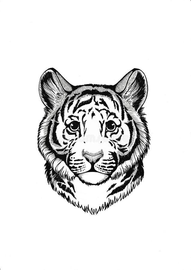 zwierzę afrykańskiej wilder tygrys Mały zwierzę Śliczny druk dla dzieci odziewa ilustracji