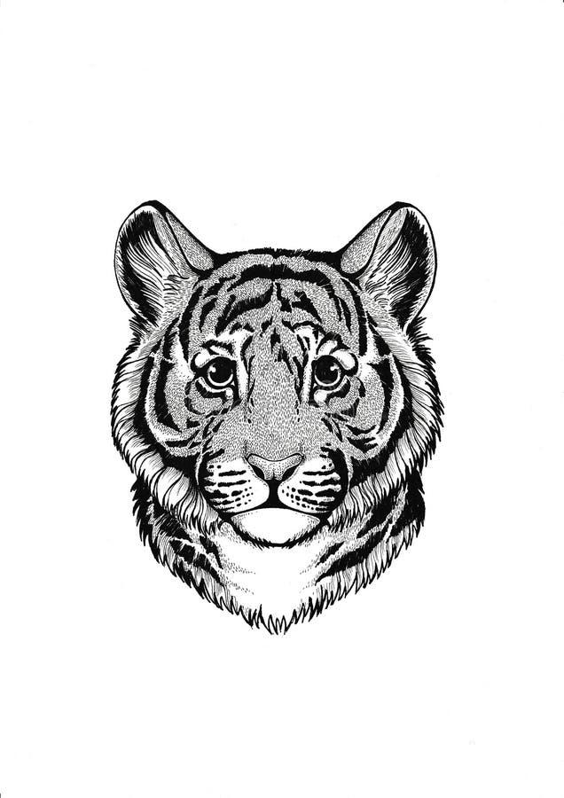 zwierzę afrykańskiej wilder tygrys Mały zwierzę Śliczny druk dla dzieci odziewa ilustracja wektor