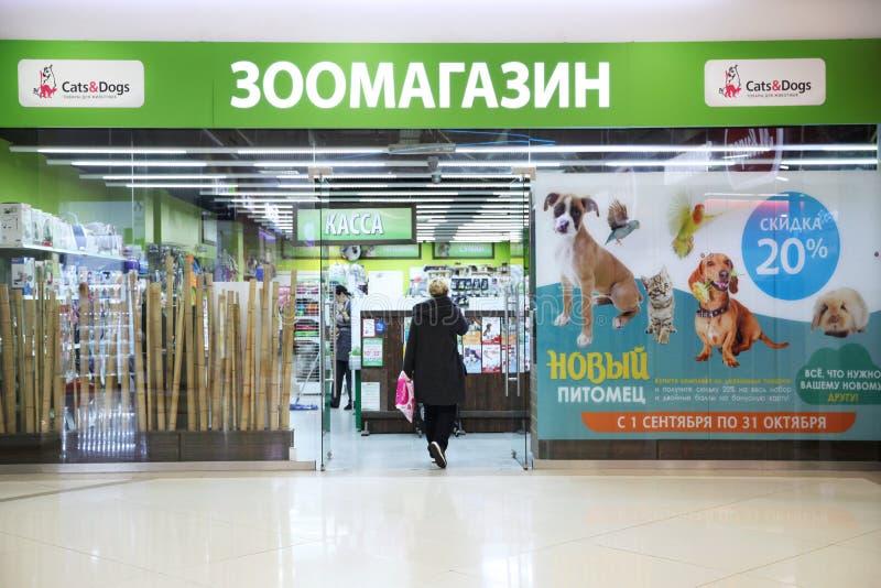Zwierzę domowe sklep «kot i pies « obrazy stock