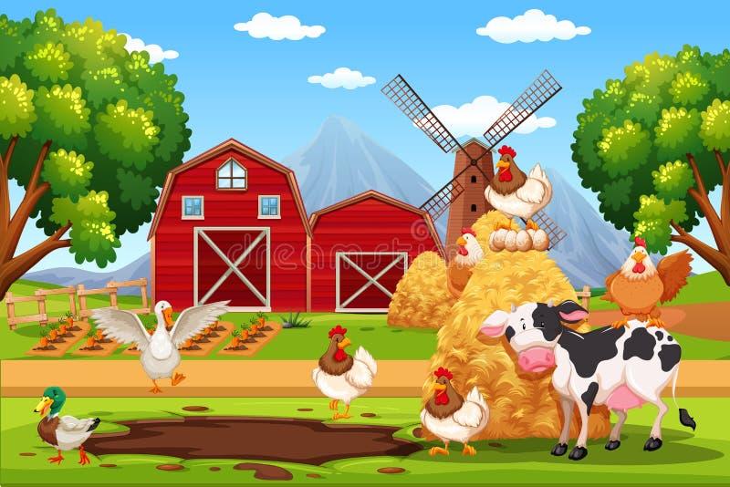Zwierzę przy gospodarstwem rolnym ilustracja wektor