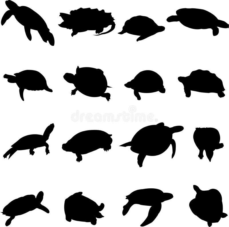 zwierzęcego czołgania wolny żółw bardzo ilustracji