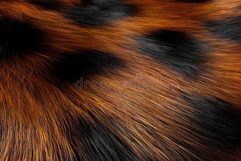 Zwierzęcego futerka Łaciasta tekstura lampart świadczenia 3 d royalty ilustracja