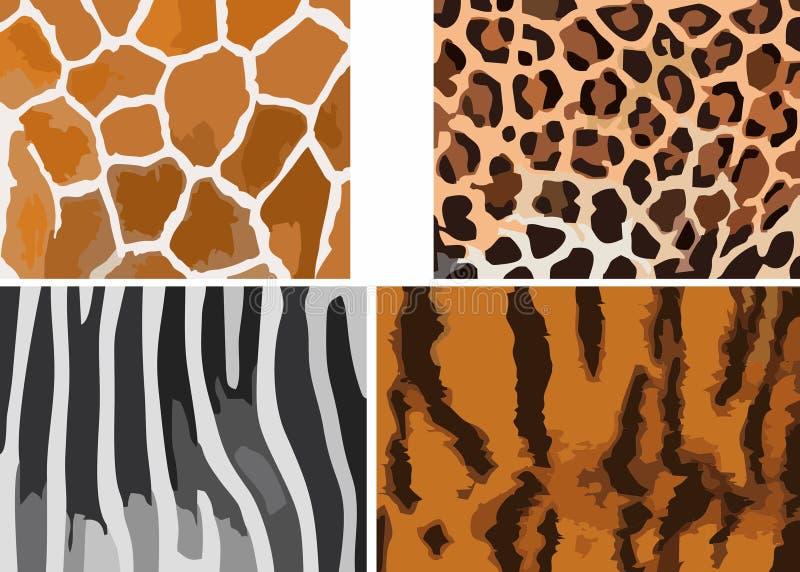 Zwierzęcej skóry graficzne tekstury żyrafa, gepard, zebra i tygrys -, Wektorowa ilustracja EPS ilustracji