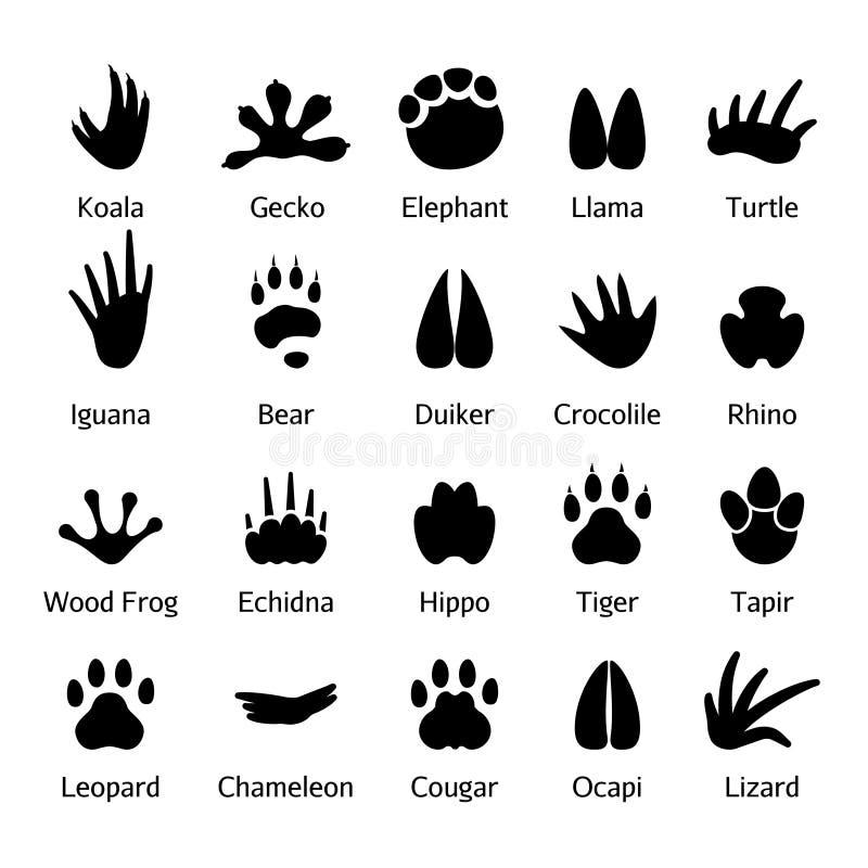Zwierzęcia i gada odciski stopy wektorowi royalty ilustracja