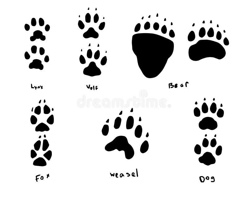 Zwierzęcy ślada ilustracja wektor