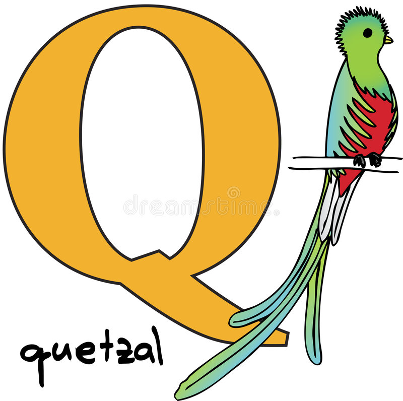 zwierzęcy abecadła quetzal q royalty ilustracja