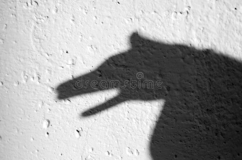 zwierzęcy cień zdjęcia stock