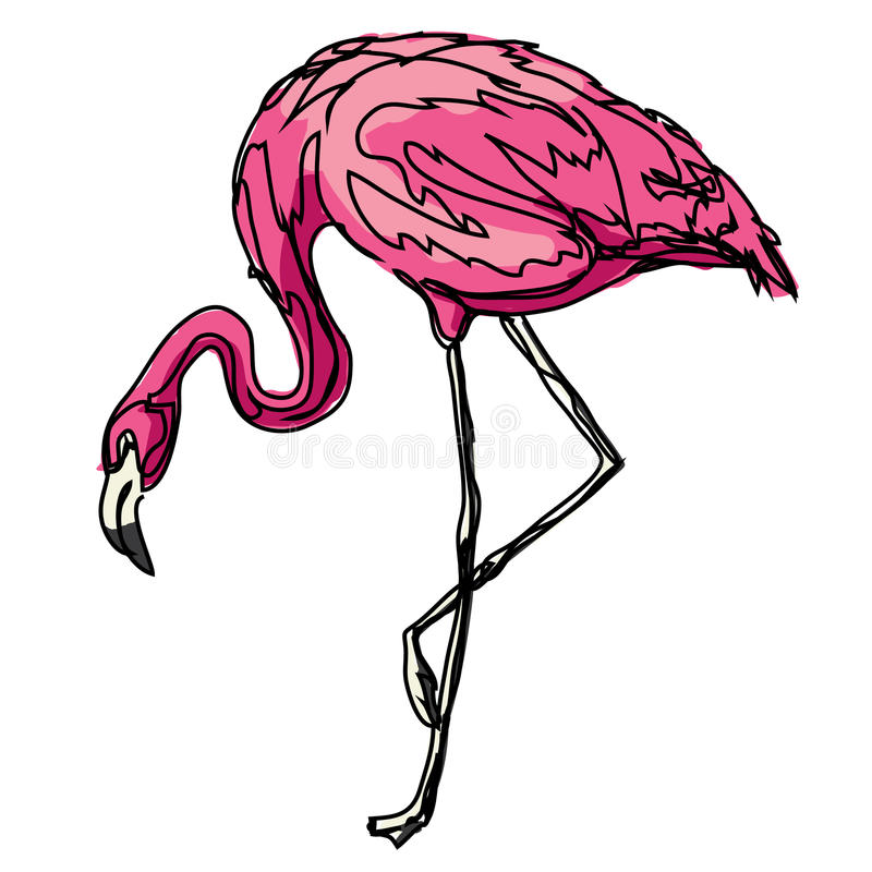 Zwierzęcy flaminga ptaka menchii konturu zoo zdjęcie royalty free
