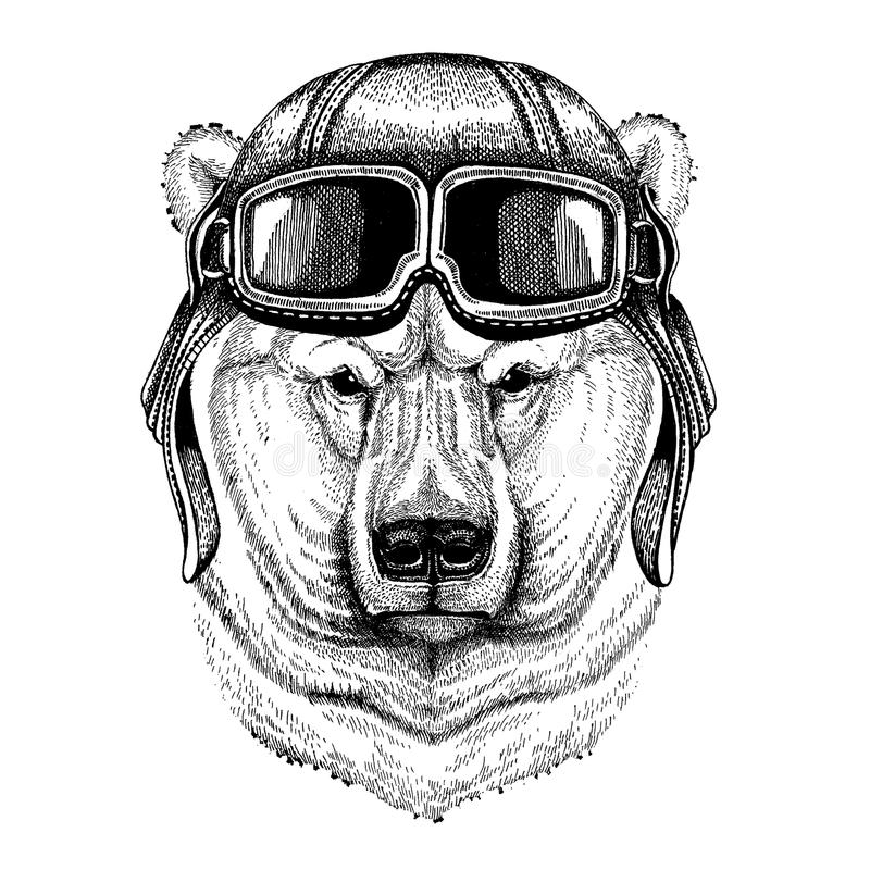 Zwierzęcy jest ubranym lotnika hełm z szkłami target1888_0_ polowania labiryntu obrazka węża wektor Duży niedźwiedź polarny, Biał ilustracji