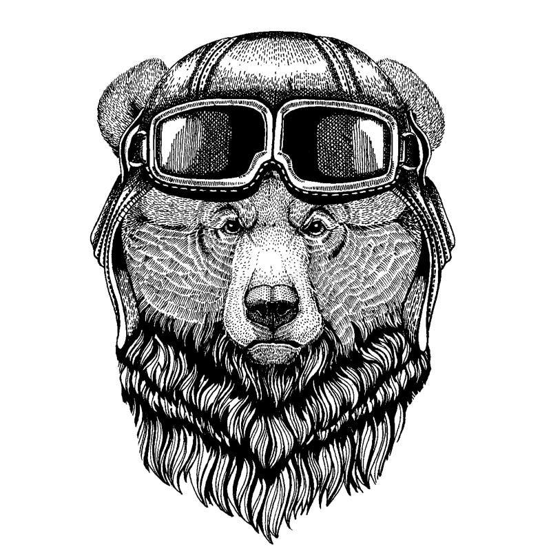 Zwierzęcy jest ubranym lotnika hełm z szkłami target1888_0_ polowania labiryntu obrazka węża wektor Grizzly niedźwiedzia Duża dzi ilustracja wektor