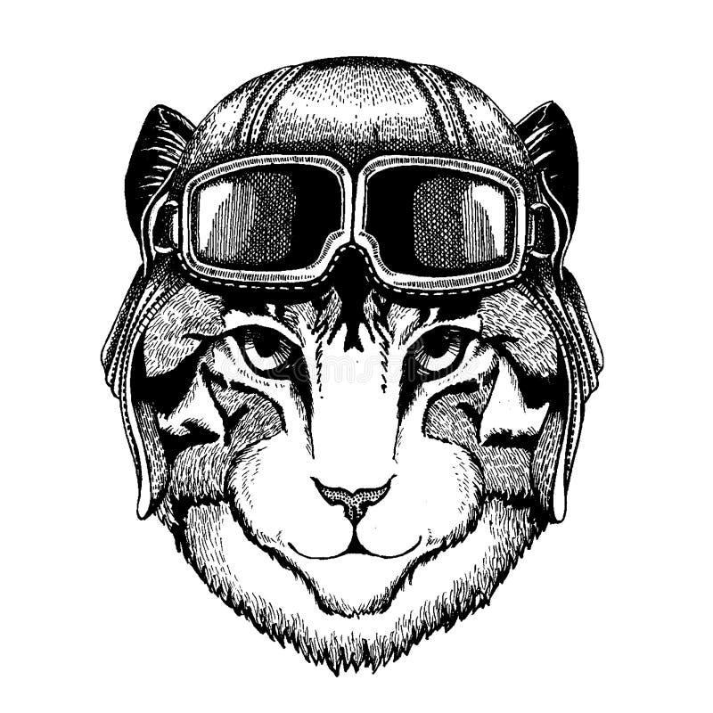 Zwierzęcy jest ubranym lotnika hełm z szkłami target1888_0_ polowania labiryntu obrazka węża wektor Wizerunek domowego kota ręka  royalty ilustracja