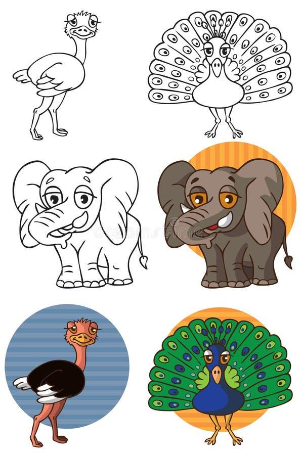 Zwierzęcy słonia paw, struś i royalty ilustracja