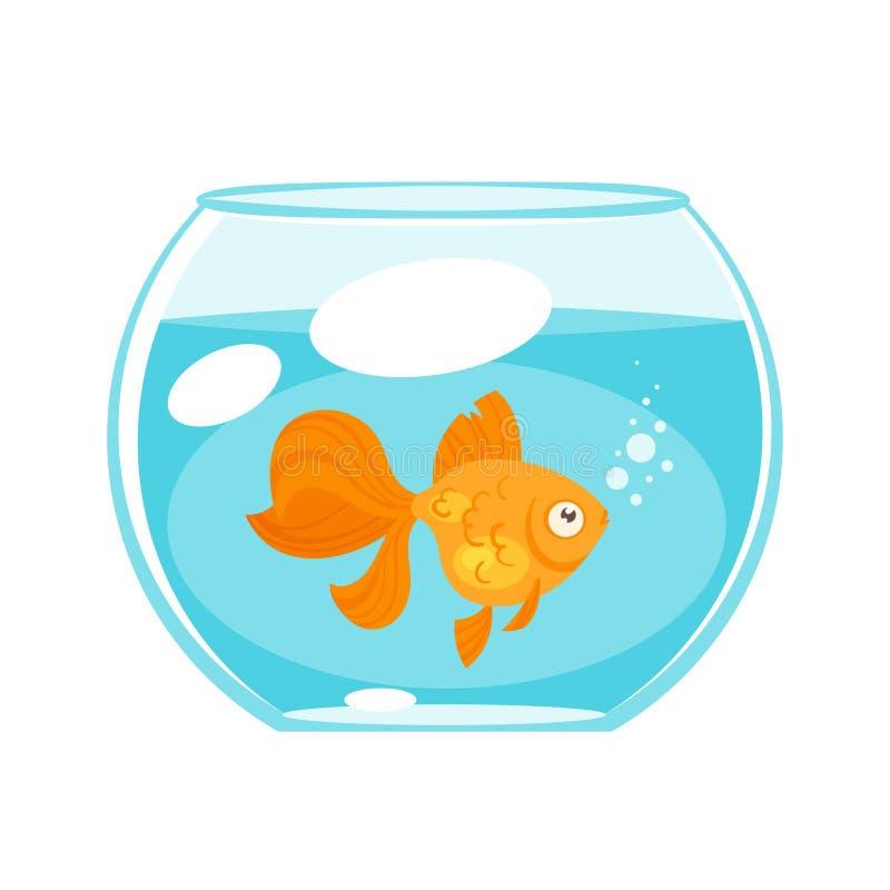 Zwierzęcy zwierzę domowe - złoto ryba royalty ilustracja