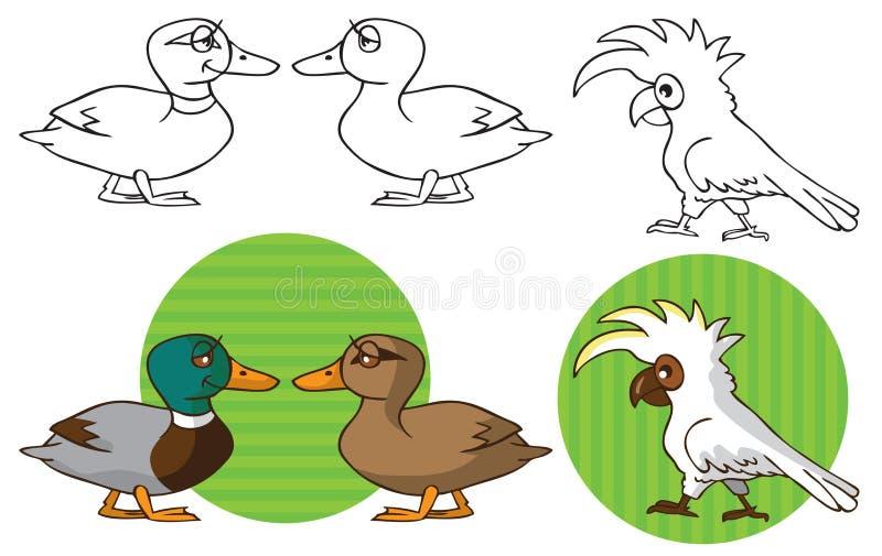 Zwierzęta domowe papuzi kakadu i kaczka royalty ilustracja